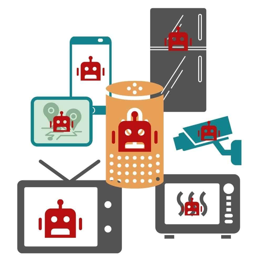 IoT Botnet